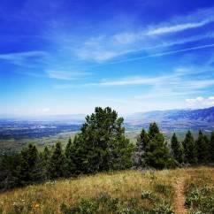 Saturday Hike @ Triple Tree